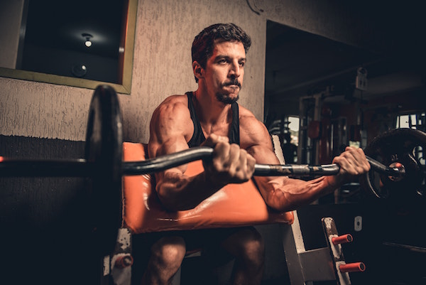 What are gains in fitness?